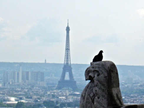 eifel and pigeon